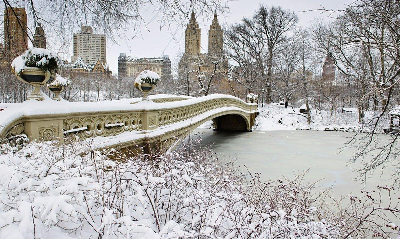 New York City January Break - Image 1