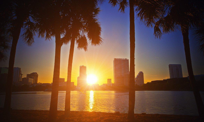 Orlando Summer 2019 - Image 5