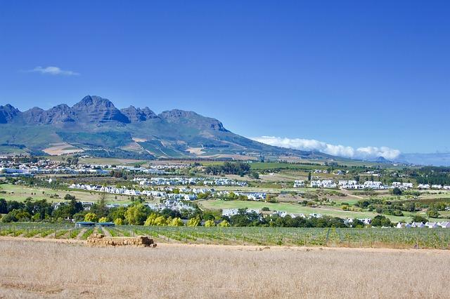 Cape Town Sampler - Image 6