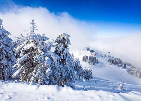 4*Romania Ski - Image 4