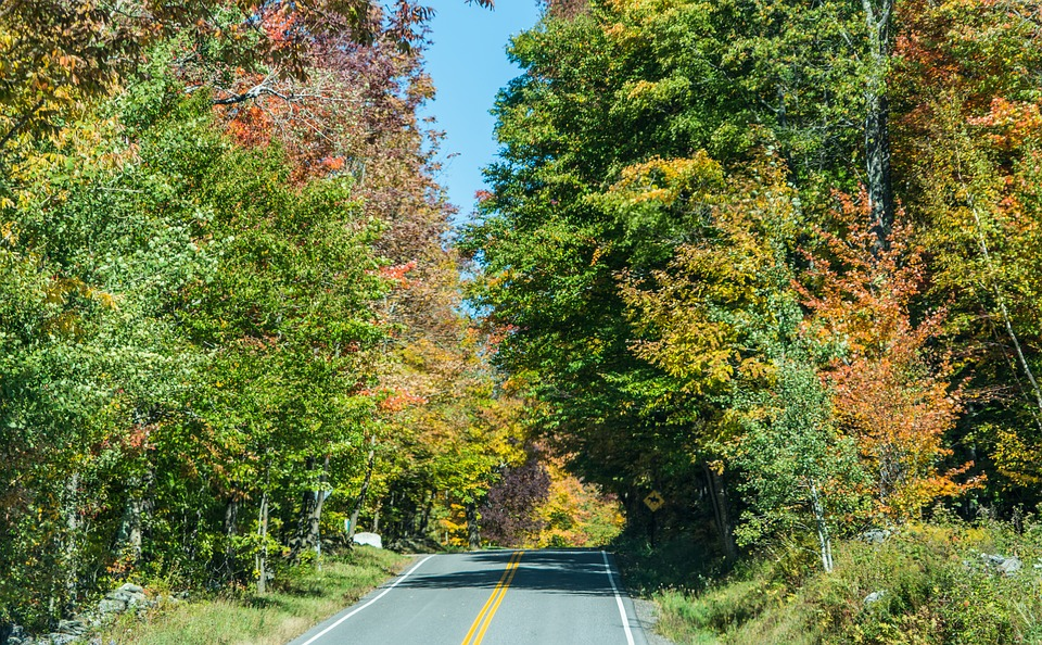 NEW ENGLAND IN THE FALL - Image 2