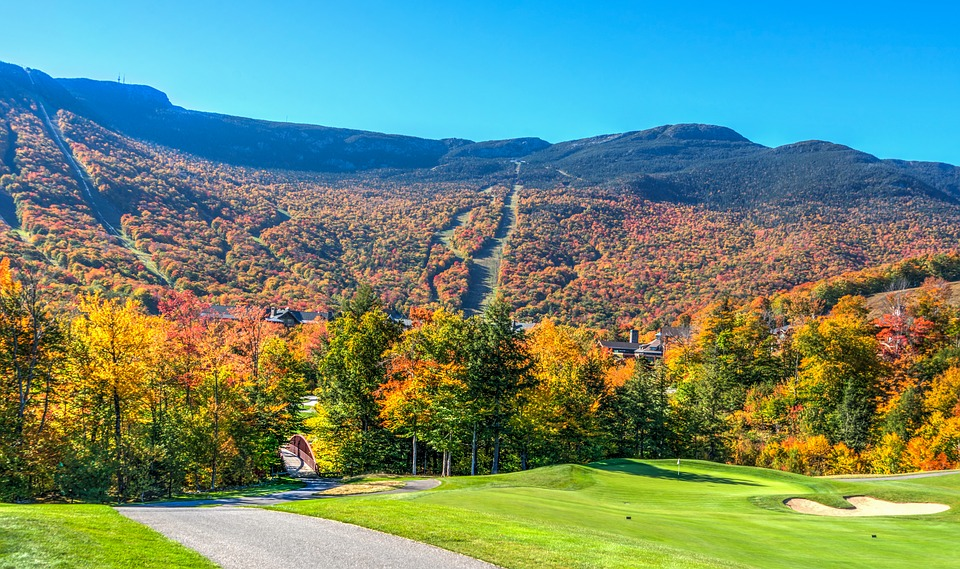 NEW ENGLAND IN THE FALL - Image 1