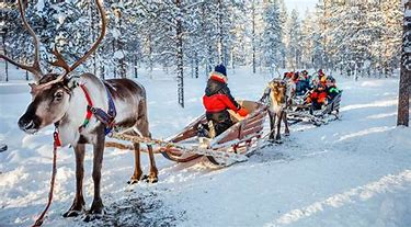 LAPLAND 2021 SPECIAL BLACK FRIDAY DISCOUNT