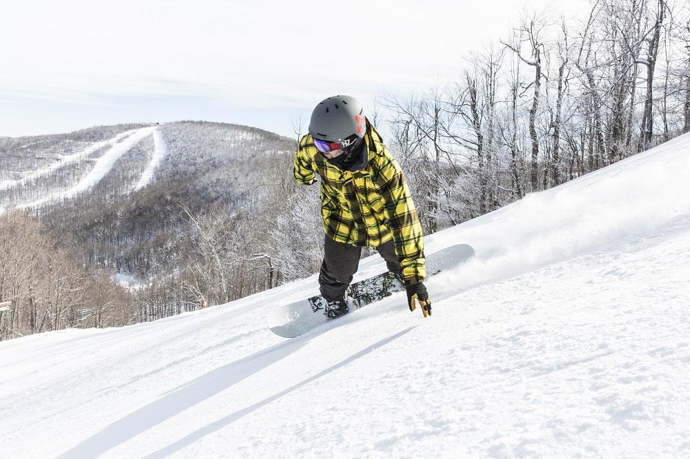 January Ski Sale America Ski New York State - Image 4
