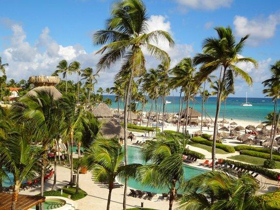 5 STAR Dominican Republic - Image 4