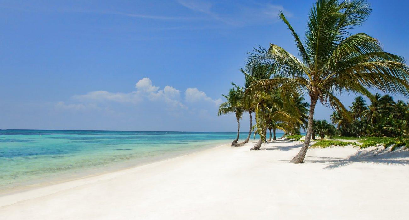 5 STAR Dominican Republic - Image 7