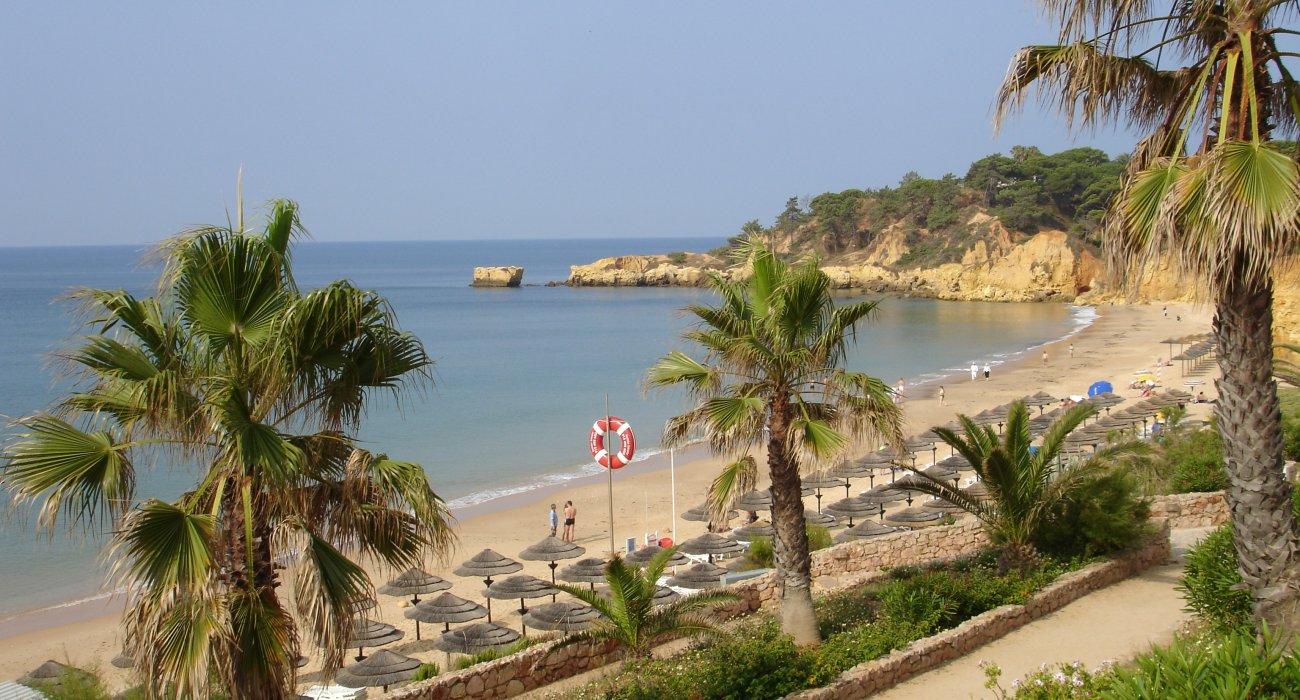 Paradise In Portugal April Sunshine - Image 1