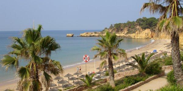 Paradise In Portugal April Sunshine