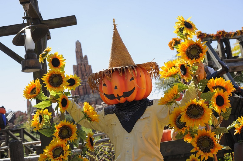 Halloween in DisneyLand Paris - Image 4