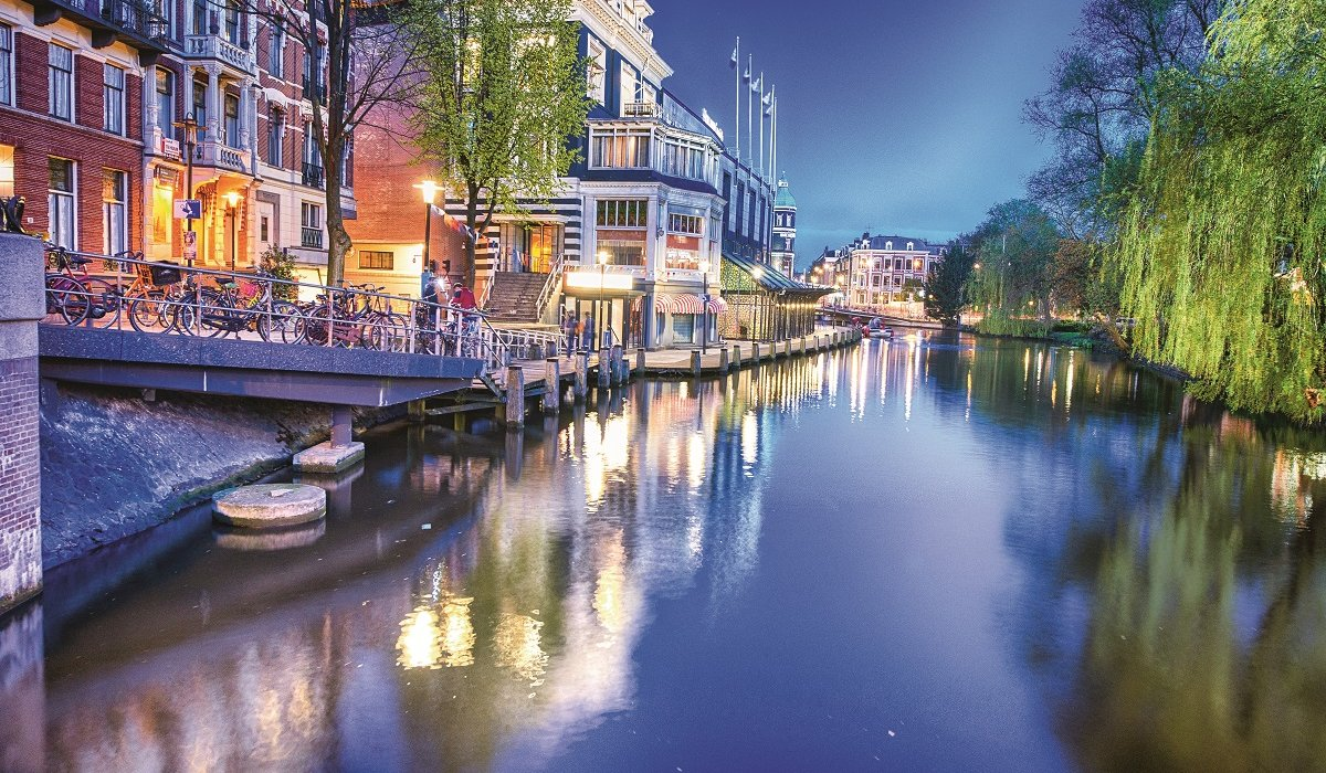 Amsterdam and the Glorious Dutch Bulb Fields - Image 1