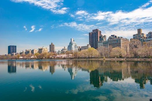 New York New York Feb Bargain - Image 2