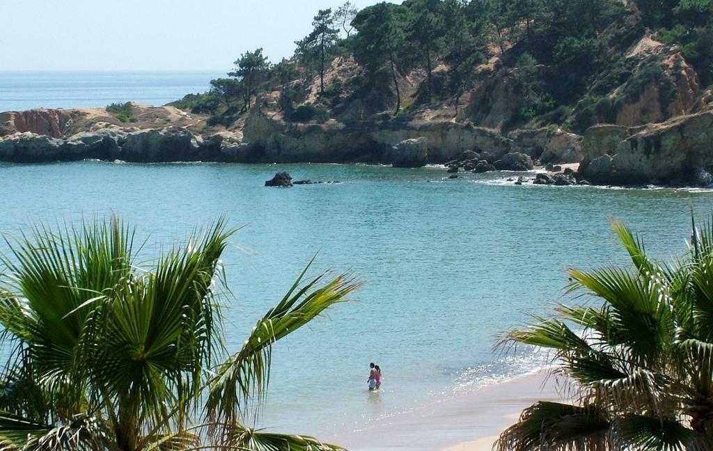 Paradise In Portugal April Sunshine - Image 4