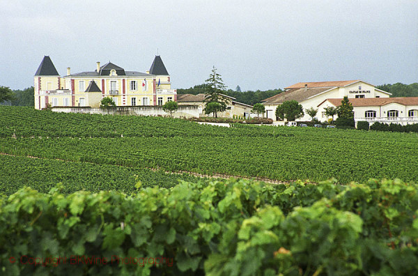 The Beautiful Wine Region of Bordeaux - Image 2