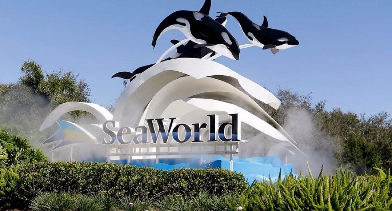 #NInja Verdict – Seaworld Orlando, Florida - Image 1