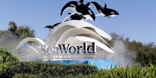 #NInja Verdict – Seaworld Orlando, Florida