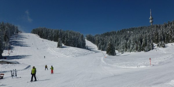 Ski Week Bulgaria from only £549