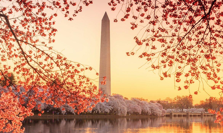Washington DC February City Break - Image 6