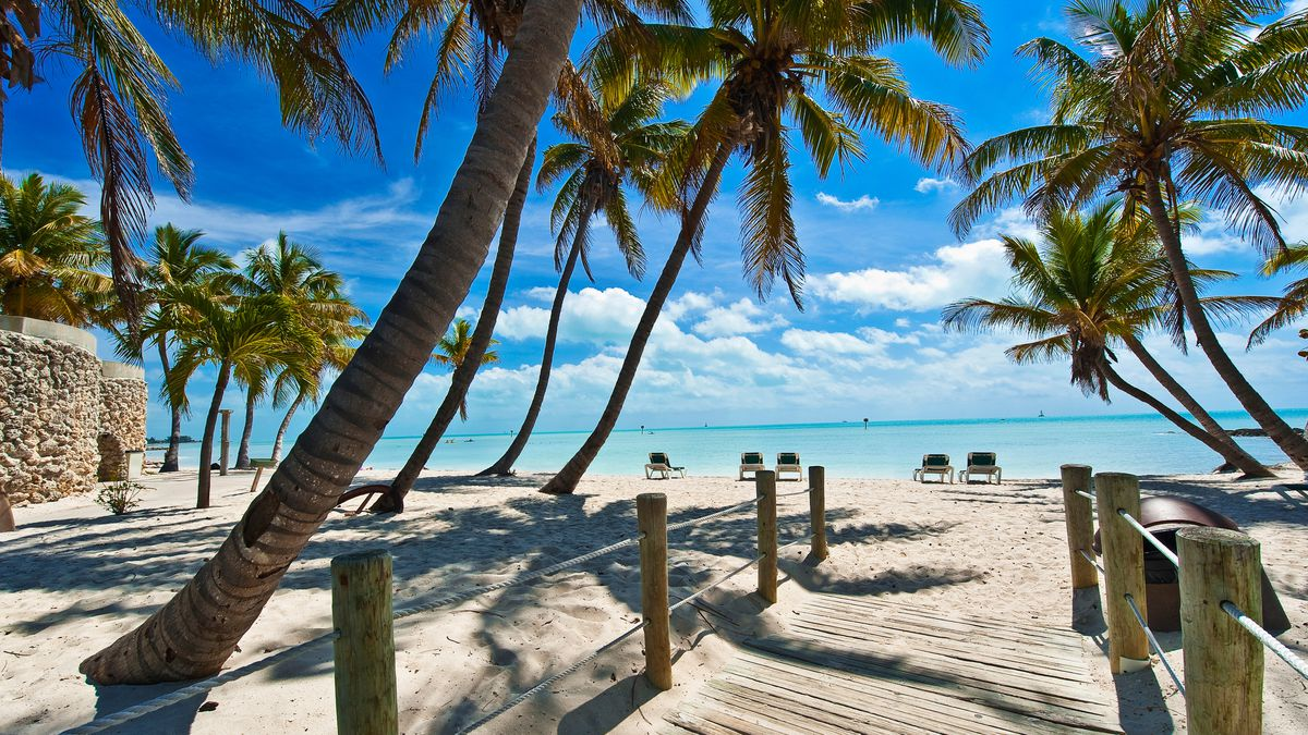 Miami and 5* All Inclusive Caribbean Cruise - Image 1