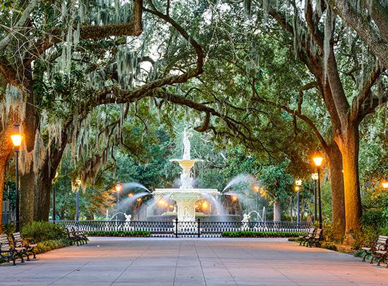Discover Georgia and South Carolina - Image 5
