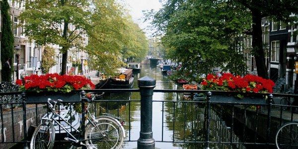Christmas Gift to Amsterdam