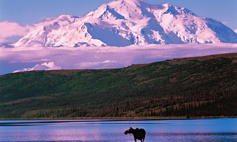 Alaska Fly/Cruise - Image 8