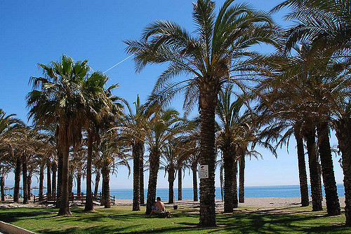 Costa Del Sol 11th Feb Late Deal - Image 1