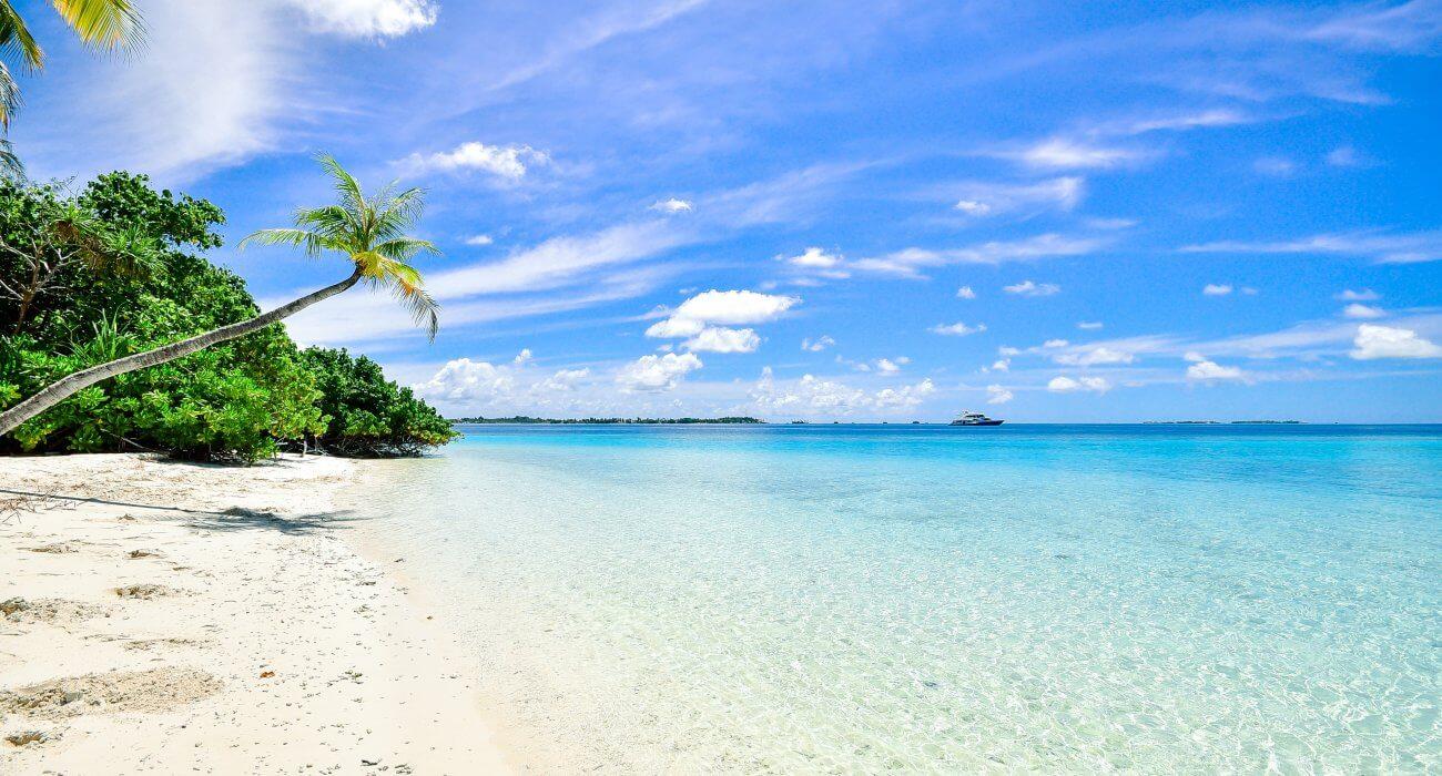 Luxury Miami & Caribbean Cruise - Image 2