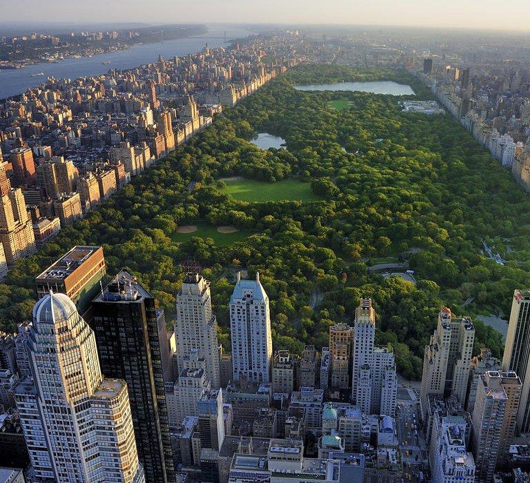 New York End of Summer Bargain - Image 2