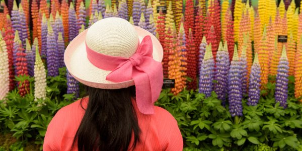 Chelsea Flower Show Perfect Mothers Day Gift