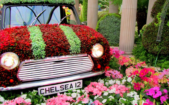 Chelsea Flower Show Perfect Mothers Day Gift - Image 5
