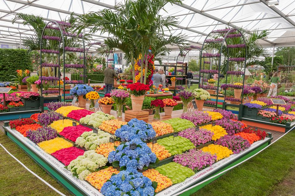 Chelsea Flower Show Perfect Mothers Day Gift - Image 7