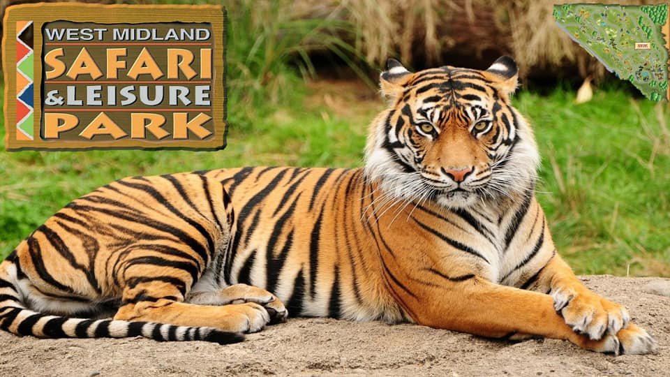 Cbeebies, Safari Park & Nickelodeon Land - Image 3