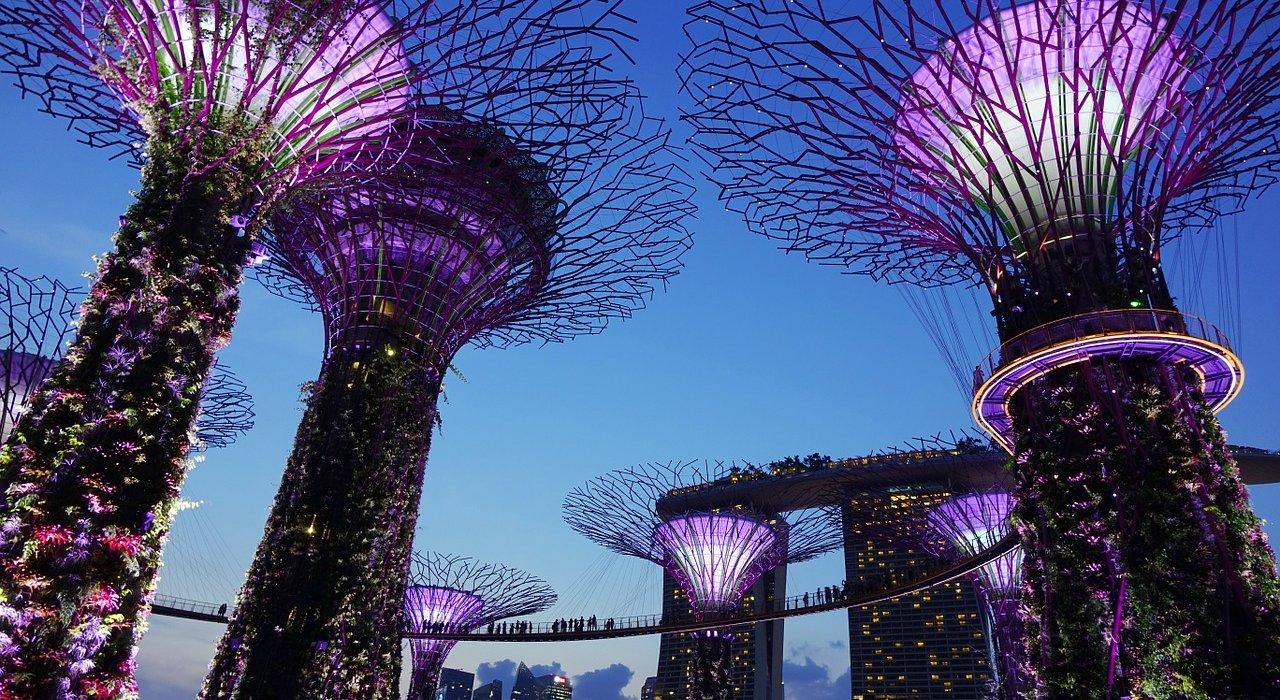 Dubai, Sydney & Singapore in Style - Image 4