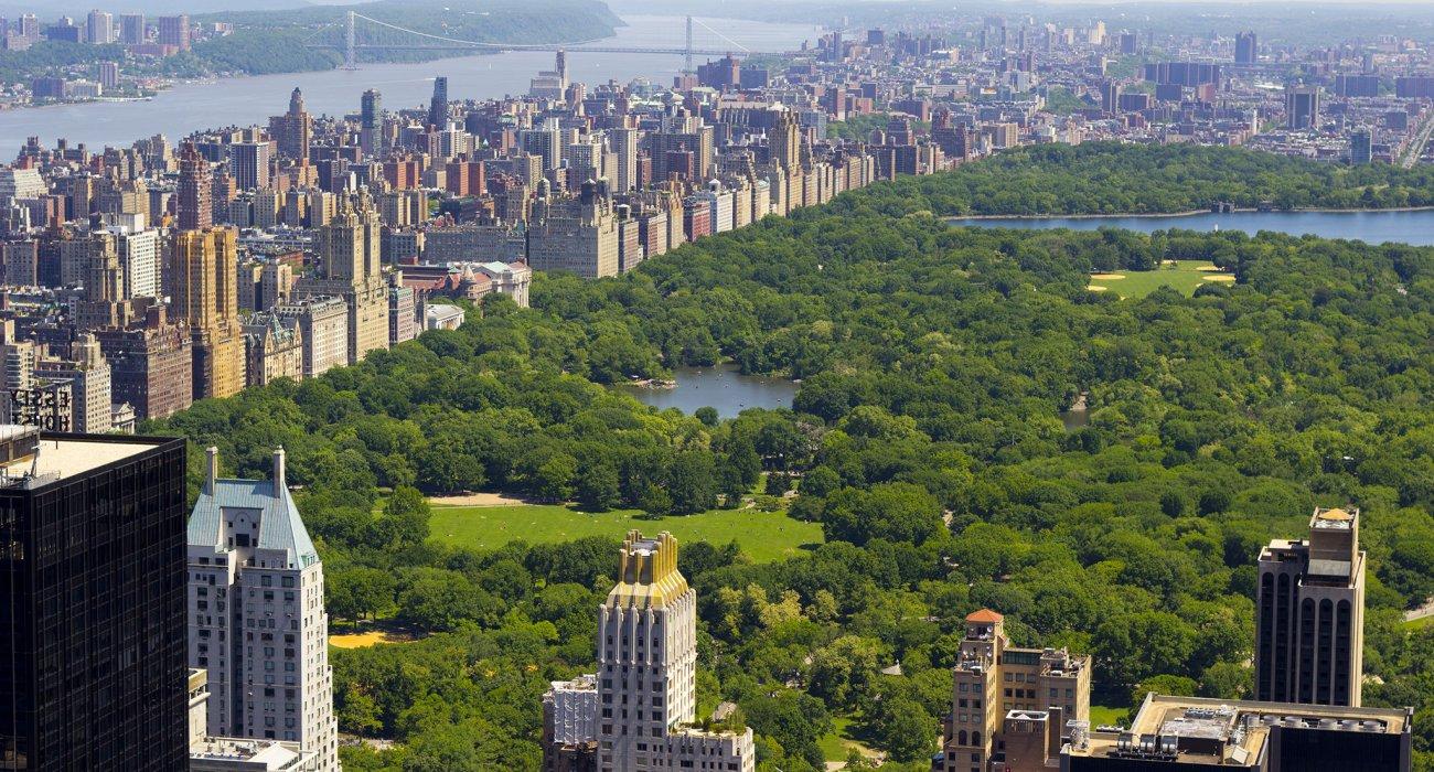 St Patrick's Day in New York City - Image 3