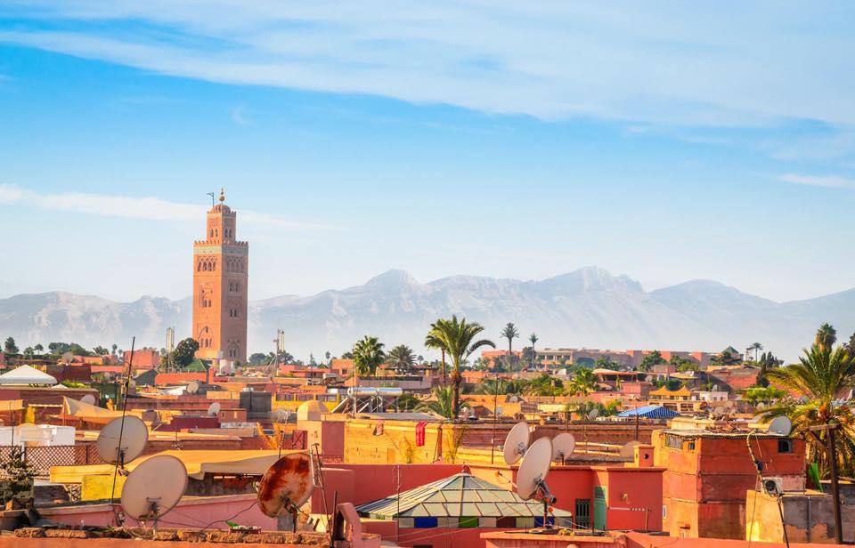 November Marrakech Ninja Bargain - Image 1