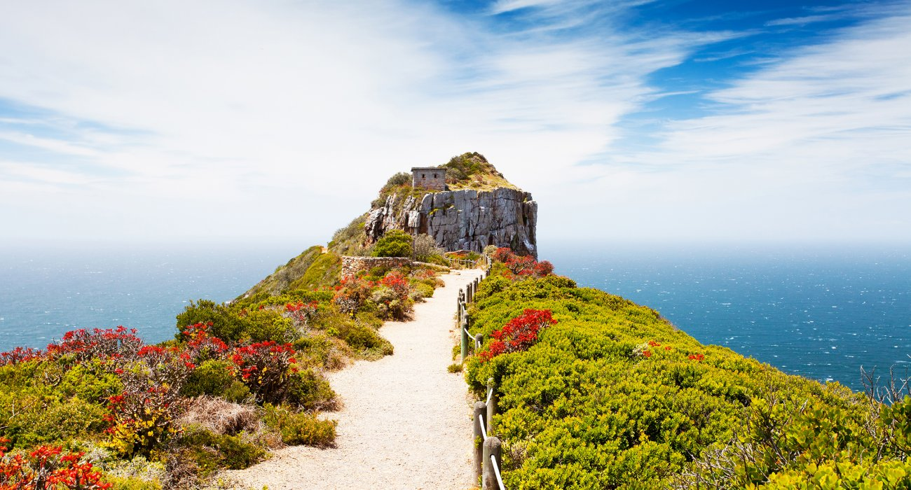 Cape Town, Winelands, Garden Route & Safari - Image 3
