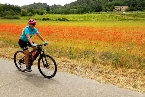 Cycle Tour in Tuscany Italy - Image 6