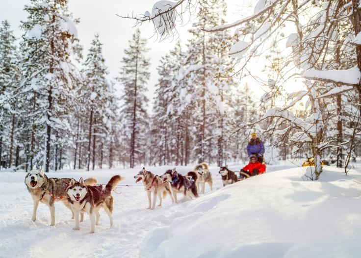 4 nights in Lapland Free Child Place - Image 1