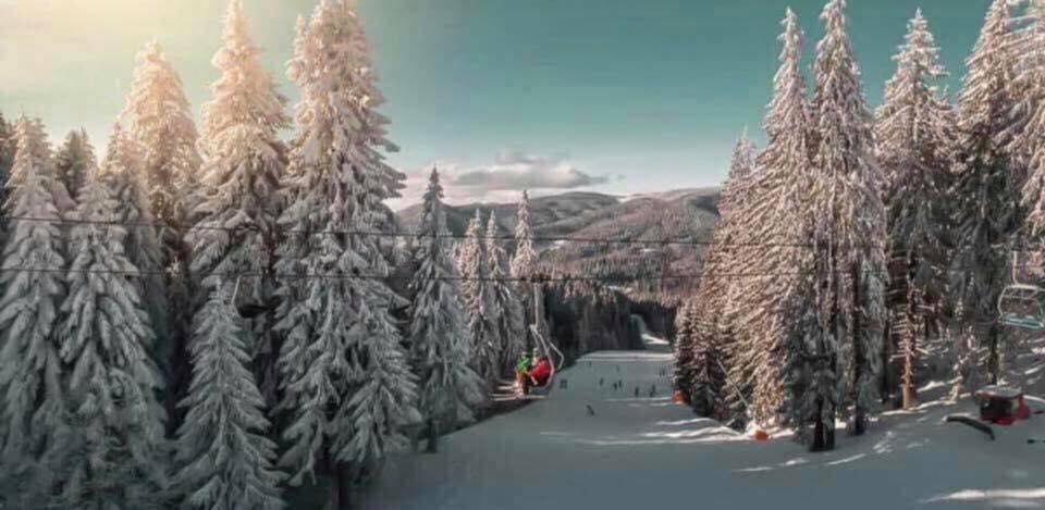 Romania Ski 2020 Ski in Transylvania - Image 3
