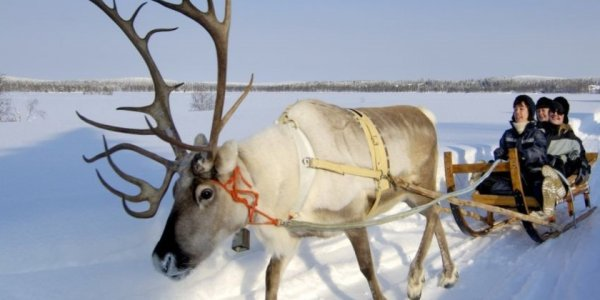 Dashing through the Snow – Lapland