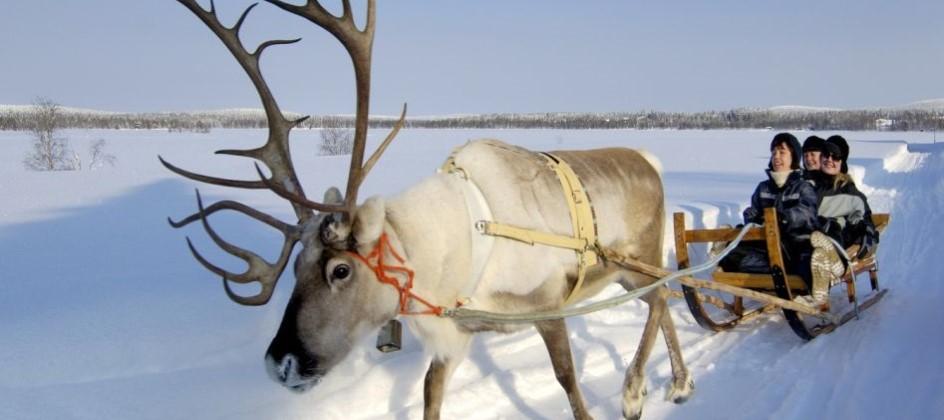 Lapland Family Christmas Trip - Image 3