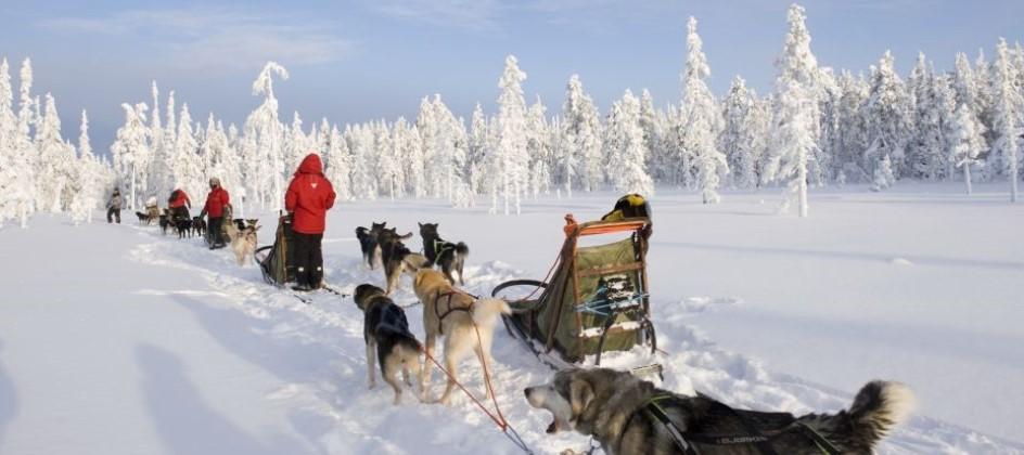 Lapland Family Christmas Trip - Image 1