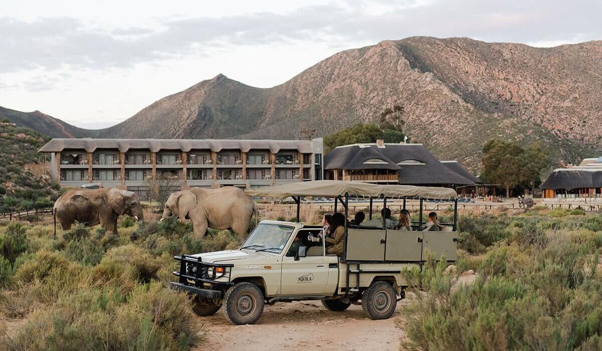 Cape Town, Safari & Winelands Trip - Image 2
