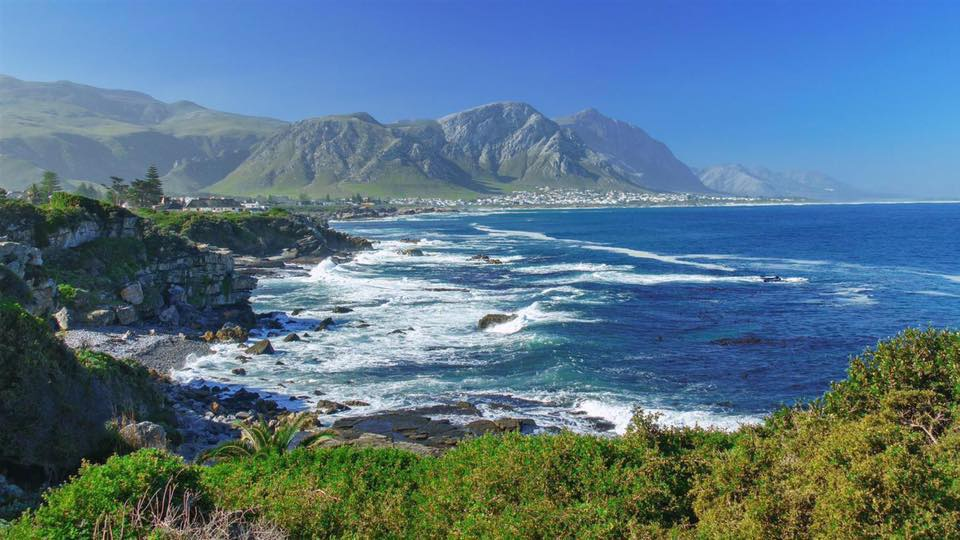 South Africa Summer 2020 - Image 6