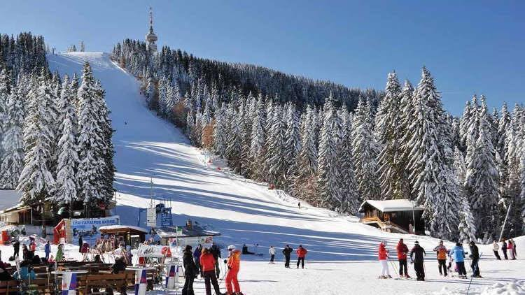 Spend Christmas on the Slopes - Image 3