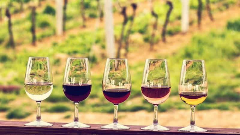 Summer Wine Break in Beautiful Bordeaux - Image 1