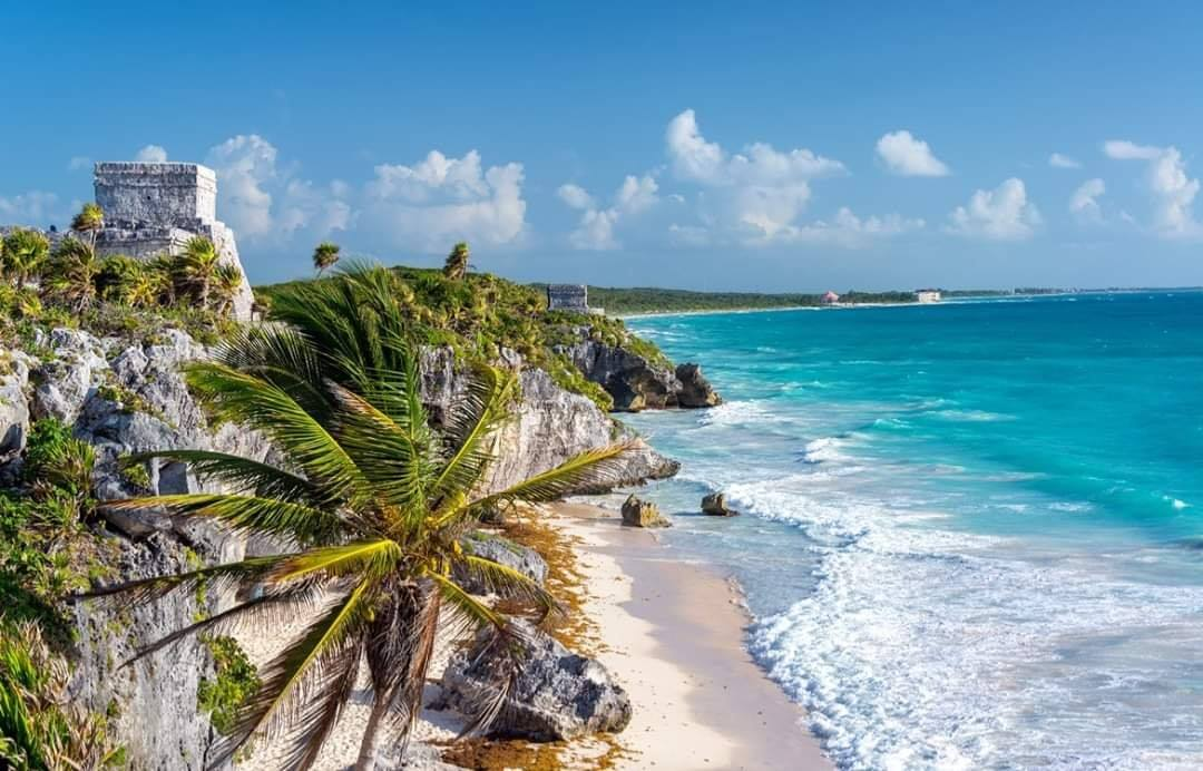 Miami & Mexico Price Drop Fare - Image 1