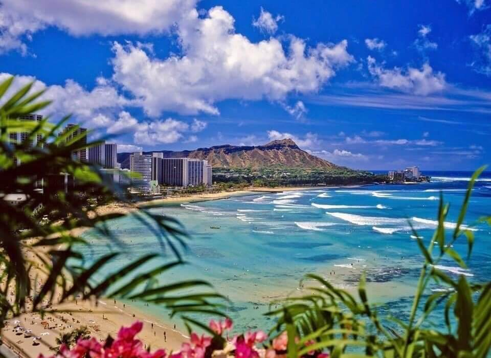 Hawaii and Pacific Islands Cruise - Image 1