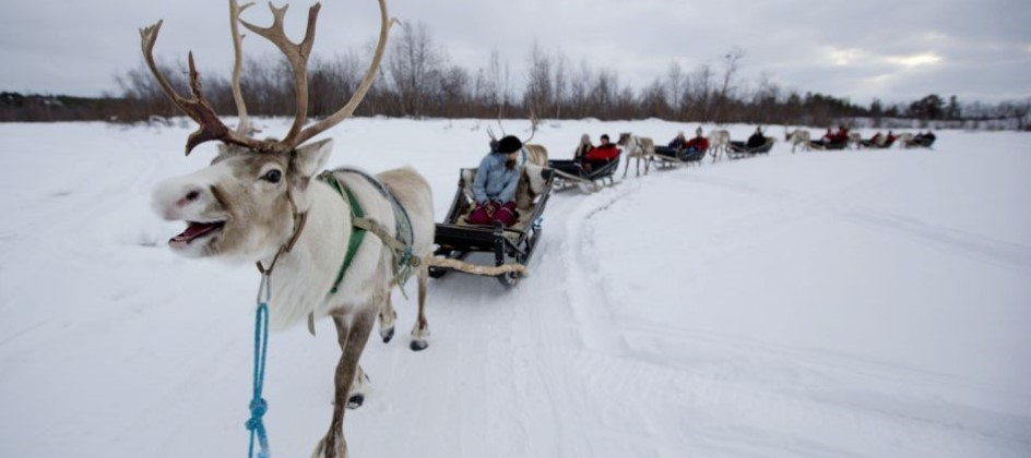 Family Dream Holiday to Finnish Lapland - Image 3