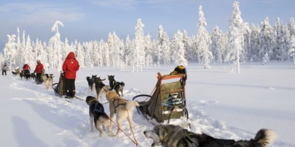 Family Dream Holiday to Finnish Lapland